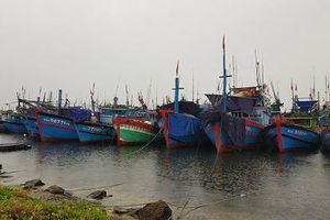 Các tỉnh miền Trung 'cấm biển', khẩn trương ứng phó bão số 4
