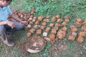 Điện Biên hủy nổ an toàn 71 quả bom bi, bom cái