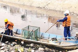 Ðổi mới công nghệ xử lý rác, góp phần bảo vệ môi trường