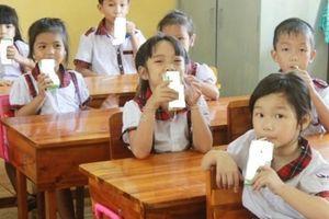 Chương trình Sữa học đường: Cần có danh mục quy định về các vi chất trong sữa tươi