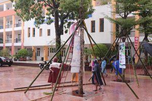 Nhiều trường ở Nghệ An thông báo nghỉ học để tránh bão số 4