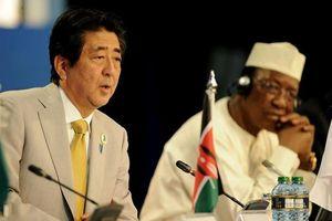 Nhật Bản kỳ vọng can dự sâu hơn về kinh tế với châu Phi