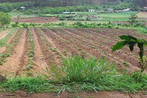 Tháo gỡ bất cập về ghi nợ tiền sử dụng đất