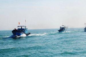 Hơn 2300 tàu cá của Quảng Trị đã vào nơi tránh trú bão số 4