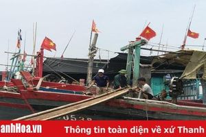 Đã liên lạc được với 3 tàu cá của huyện Hậu Lộc