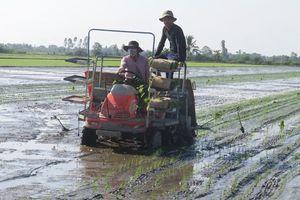 Nông dân từng bước hướng đến sản xuất theo chuỗi