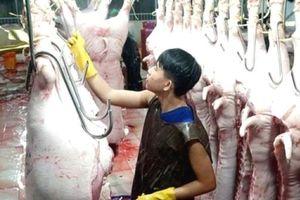 Quản lý giết mổ nhỏ lẻ: Thay đổi thói quen sản xuất, tiêu dùng