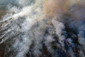 Trung Quốc kêu oan khi bị truyền thông phương Tây tố 'góp lửa' vào thảm họa cháy rừng Amazon