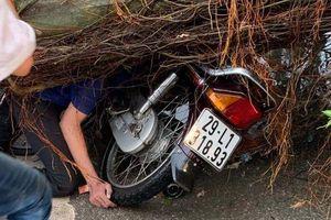 Hà Nội: Nam thanh niên bị cây đổ đè chết trên phố giữa trận giông lốc