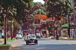 Những góc Sài Gòn xưa yên bình qua loạt ảnh màu