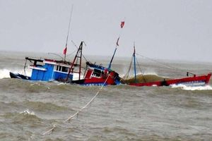 Khẩn trương ứng phó áp thấp nhiệt đới gần Biển Đông