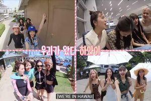 BlackPink hé lộ kỳ nghỉ tuyệt vời, 'tươi không cần tưới' trong '2019 BlackPink's Summer Diary (In Hawaii)' DVD