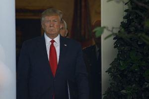 Ông Trump đổ lỗi các công ty Mỹ quản lý kém
