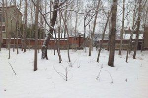 Thi thể cháy đen giữa rừng tuyết và 2 người con rể bị bắt sau 9 năm