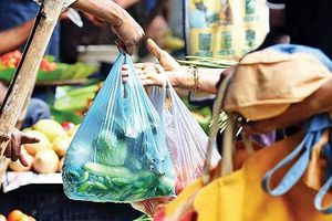 Bang Uttar Pradesh của Ấn Độ cấm hoàn toàn túi nhựa polythene