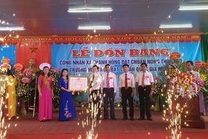 Thanh Hà, Hải Dương: Xã Thanh Hồng đạt chuẩn nông thôn mới