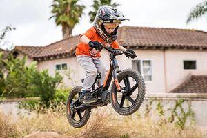 Xe điện Harley-Davidson IRONe chỉ 15,2 triệu đồng