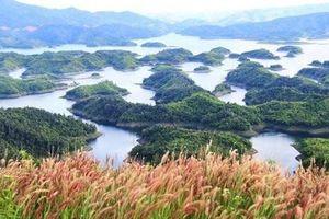 Thực trạng thực hiện cơ chế tự chủ tài chính tại các vườn quốc gia, khu bảo tồn thiên nhiên
