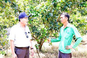 Khánh Vĩnh: Nghiên cứu bổ sung cây trồng chủ lực