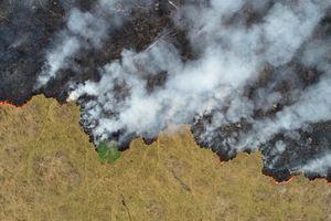 Thêm hàng nghìn đám cháy rừng ở Amazon, Brazil