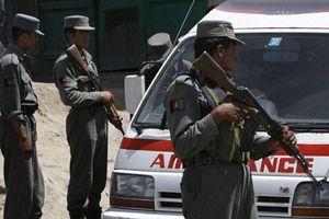 Afghanistan: Đánh bom làm rung chuyển Kabul giữa lúc đặc phái viên Mỹ tới thăm