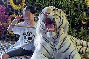 Chụp ảnh 'selfie' cùng động vật hoang dã sẽ có hại cho chúng