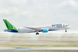 Bamboo Airways xin điều chỉnh giấy phép kinh doanh, tăng quy mô đội bay lên 30 chiếc