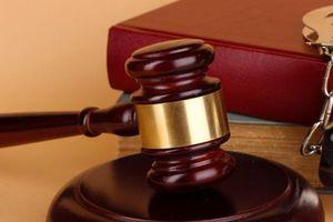 Xác định trách nhiệm bồi thường của các bị cáo trong vụ lừa đảo ở Công ty King Việt Nam