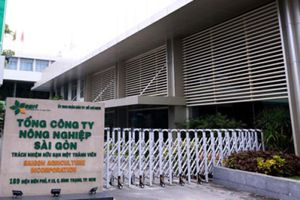6 cán bộ, lãnh đạo Tổng công ty nông nghiệp Sài Gòn bị kỷ luật