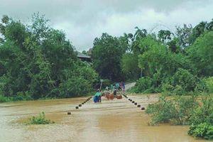 Hà Tĩnh: Vẫn chưa liên lạc được với 7 người dân tộc Chứt vào rừng lấy lá nón