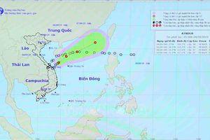 Theo dõi chặt chẽ diễn biến áp thấp nhiệt đới và tiếp tục tìm kiếm các thuyền viên mất tích