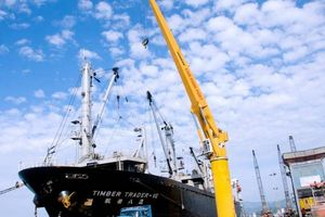 Lợi nhuận cảng Cam Ranh liên tục tăng mạnh
