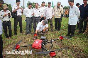 Đột phá từ nông nghiệp công nghệ cao