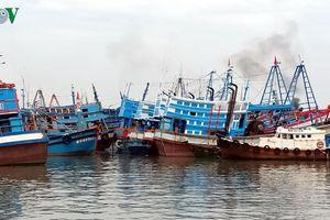 Khó ngăn đánh bắt thủy sản tận diệt: Lực lượng mỏng hay có tiếp tay?