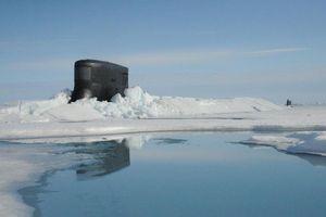 Nga ủng hộ các công ty tư nhân khai thác ở thềm lục địa Bắc Cực