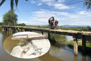 Thót tim qua cây cầu rệu rã chờ sập ở Quảng Nam