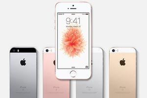 Apple sẽ ra iPhone giá rẻ đầu năm 2020