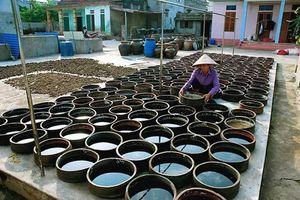 Nghề làm nước mắm Nam Ô là Di sản văn hóa phi vật thể quốc gia