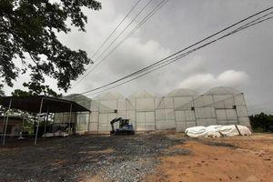 Đóng cửa xưởng sản xuất phân vi sinh gây ô nhiễm môi trường