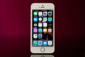 Apple đang sản xuất iPhone 'giá rẻ' mới