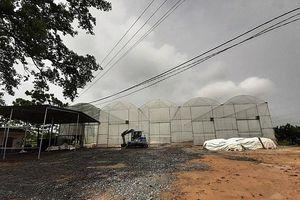 Phú Thọ: Đóng cửa xưởng sản xuất phân vi sinh không phép, gây ô nhiễm
