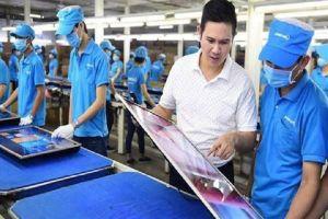 14 công ty nhập khẩu hàng cho Asanzo đã mất tích, 7 công ty ngừng hoạt động