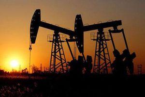 Giá xăng, dầu (5/9): Tăng trở lại