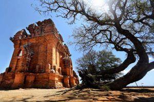 Huyền bí tháp Po Klong Garai