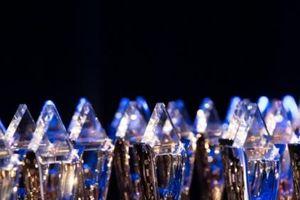 Vì sao VNPT thắng lớn tại giải thưởng quốc tế Stevie Awards?