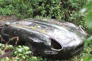 Xe sang bị 'bỏ quên' trong rừng 30 năm được định giá bạc tỷ