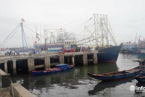 4 thuyền viên Nghệ An trôi dạt trên biển được cứu sống, sức khỏe yếu