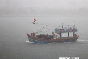 Đã cứu được 5 trong số 7 thuyền viên tàu cá bị chìm