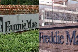 Chính phủ Mỹ công bố kế hoạch tư nhân hóa trở lại Fannie và Freddie