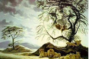 Nhiều người không đếm được số sư tử trong ảnh này, còn bạn?